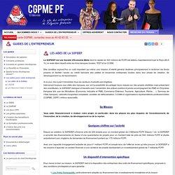 CGPME - Le site des entreprises de Polynésie française: Guides de l'entrepreneur