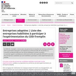 Entreprises habilitées à participer à l'expérimentation CDD-Tremplin