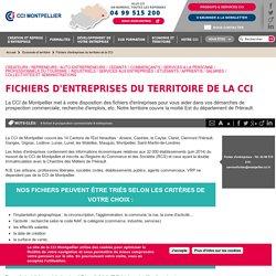 Fichiers d'entreprises du territoire de la CCI