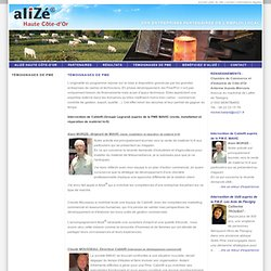 Le réseau alizé®, réseau dentreprises partenaires emploi local, programme territorial solidarité