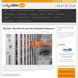 Big Data : une mine d'or pour les entreprises françaises