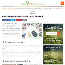 Cactus et entretien : conseils d'arrosage, plantation, floraison