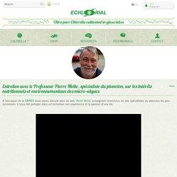 Entretien avec le Pr. Pierre Mollo, spécialiste du plancton