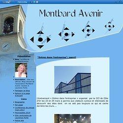 """""""Entrez dans l'entreprise"""": merci! - Le blog de montbard.avenir"""