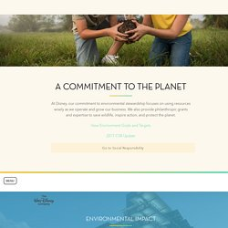 Environment - Enviromental Impact, News, Conservation Fund - The Walt Disney Company