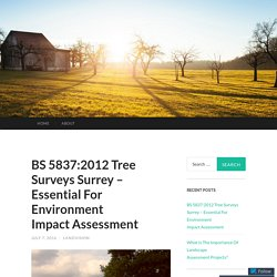 BS 5837:2012 Tree Surveys Surrey – Essential For Environment Impact Assessment