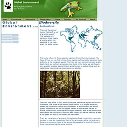 Global Environment - Biodiversity - Decidious Forest Biome