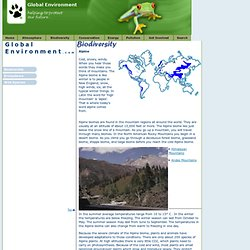 Global Environment - Biodiversity - Alpine Biome