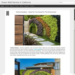 Green Wall Service in California: Vertical Gardens – Good For You Great For The Environment