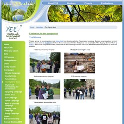 Youth and Environment Europe - Entries for the bee competition
