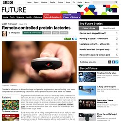 Future - Science & Environment - Remote-controlled protein factories