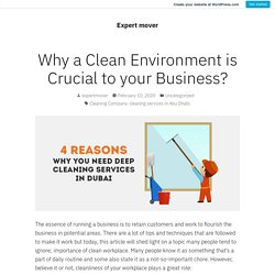 Why a Clean Environment is Crucial to your Business? – Expert mover