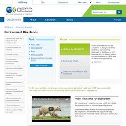 Environment Directorate