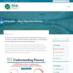 Infographic - More Than One Potency