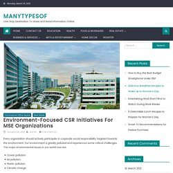 Environment-Focused CSR Initiatives for MSE Organizations