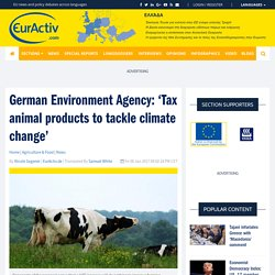 German Environment Agency: 'Tax animal products to tackle climate change' – EurActiv.com