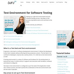 Test Environment for Software Testing