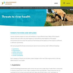 Threats to river health