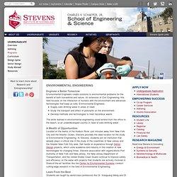 steven's IT