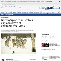 Norway's plan to kill wolves explodes myth of environmental virtue