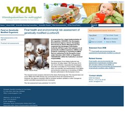 VKM_NO 14.03/16 Final health and environmental risk assessment of genetically modified LLcotton25.