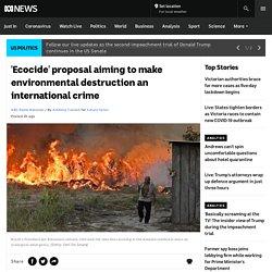 'Ecocide' proposal aiming to make environmental destruction an international crime