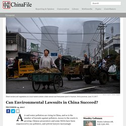 Can Environmental Lawsuits in China Succeed?