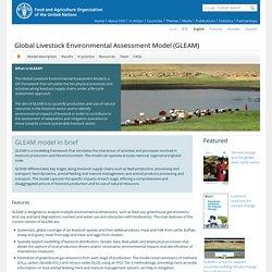 Global Livestock Environmental Assessment Model (GLEAM)
