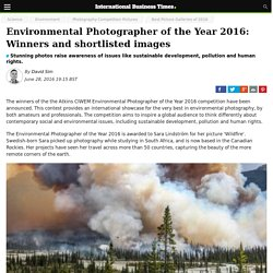 Environmental Photographer of the Year 2016: Winners and shortlisted images