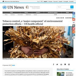 Tobacco control, a 'major component' of environmental protection efforts – UN health official
