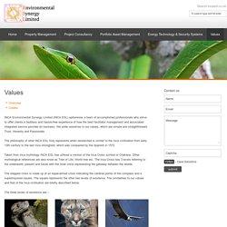 INCA Environmental Synergy Limited