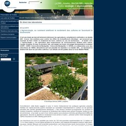 CNRS 29/05/15 L'Agroécologie, ou comment améliorer le rendement des cultures en favorisant la biodiversité