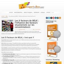 Les 5 facteurs de BELK : l'environnement influence les consommateurs