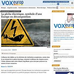 Environnement et alimentation : La pêche électrique, symbole d'une Europe en décomposition