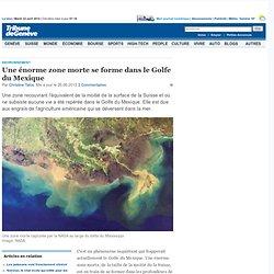 Environnement: Une énorme zone morte se forme dans le Golfe du Mexique - News Savoirs: Environnement