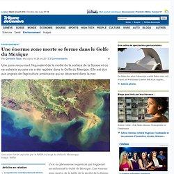 Environnement: Une énorme zone morte se forme dans le Golfe du Mexique -