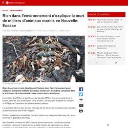 Rien dans l'environnement n'explique la mort de milliers d'animaux marins en Nouvelle-Écosse