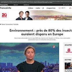 Environnement : près de 80% des insectes auraient disparu en Europe