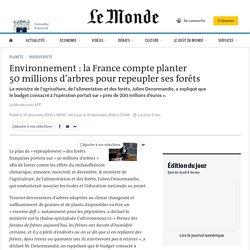 Environnement: la France compte planter 50millions d'arbres pour repeupler ses forêts