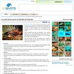 Les plus beaux spots de plongée de Mayotte / Nature, faune et environnement / Reportages / Guide / Mayotte - IleMayotte.com