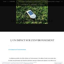 1) Un impact sur l'environnement