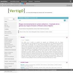 Risque environnemental et action collective: l'exemple de la gestion du risque d'érosion à Wissant (Côte d'Opale)