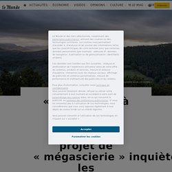 «Touche pas à ma forêt!»: dans les Pyrénées, un projet de «mégascierie»inquiète les environnementalistes