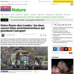 Notre-Dame-des-Landes : les deux casses têtes environnementaux qui plombent l'aéroport
