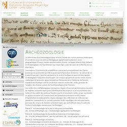 Cultures et Environnements <br /> Préhistoire, Antiquité, Moyen Âge <br /> CEPAM - UMR 7264 - Archéozoologie