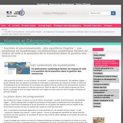 """"""" Sociétés et environnements : des équilibres fragiles"""" - Les sargasses en Guadeloupe: un phénomène systémique facteur de risque et relié à la question de la transition dans la gestion des ressources"""
