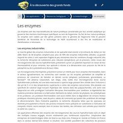 Les enzymes - À la découverte des grands fonds