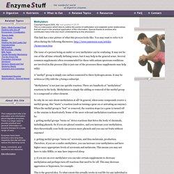 Enzymes & Methylation