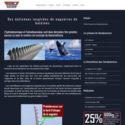 Des éoliennes inspirées de nageoires de baleines