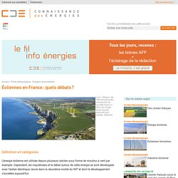Les débats sur les éoliennes en France : impact sur le paysage et les oiseaux, bruit, etc.